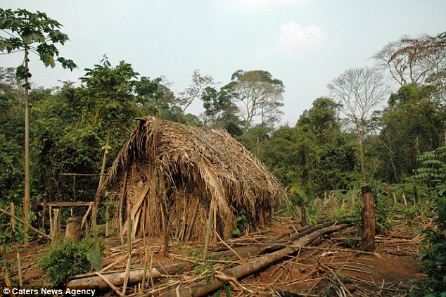 The 'loneliest man on earth's' makeshift home in the Amazon. He is believed to be in his 50s
