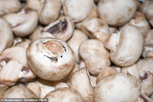 Eating 300g or more of mushrooms per week could be enough to stave off abnormal brain decline in old age, researchers from Singapore have found (stock image)