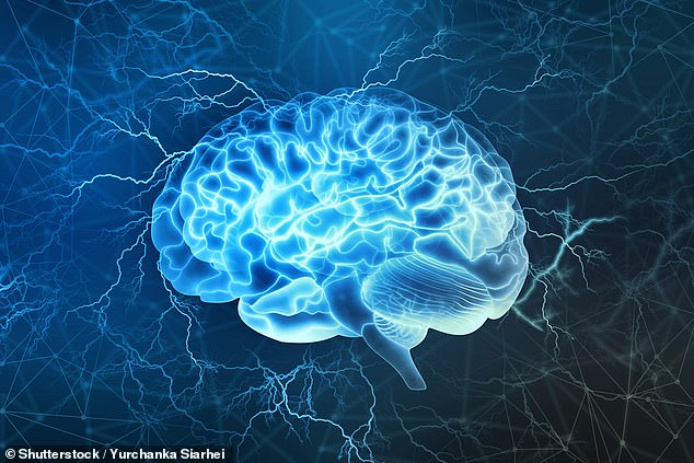 Neuroscientists believe the brain is still developing at age 18 and doesn't reach its full adult state until around the age of 30